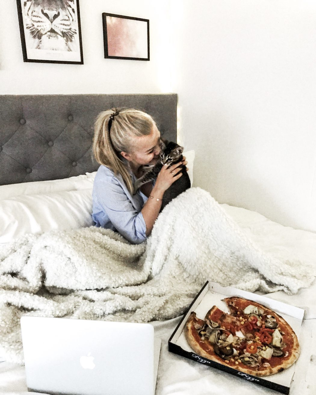 Weekly Review Blogger Pizza Chill Bed Blonde Cat Kitten