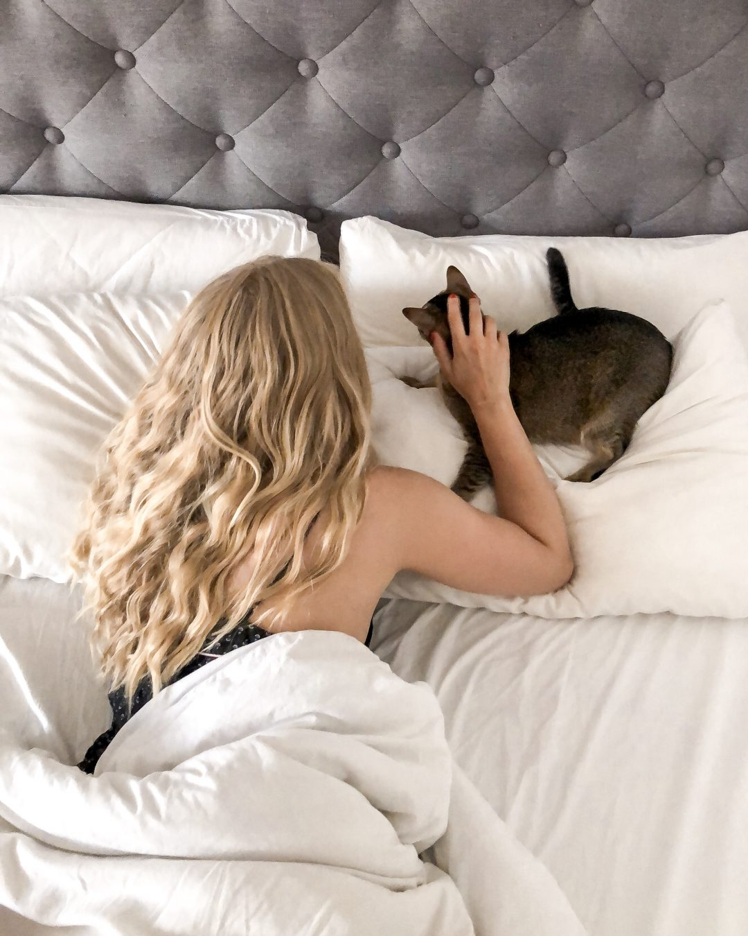 Eva_Jasmin_Felix_Kolumne_Cat_Content_Cuddles_Lingerie